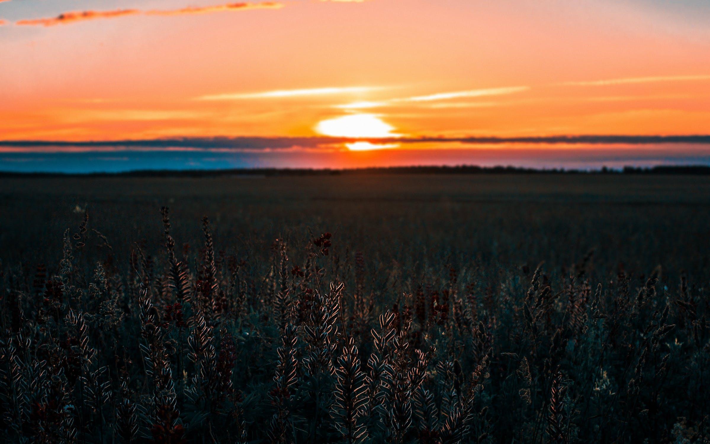 Sunset Pexels Irina Kostenich