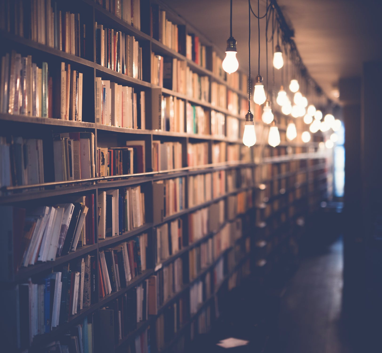 Library Shelves pexels-photo-590493.jpeg Janko Ferlic